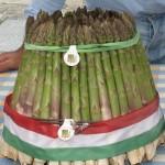 asparagi santena mazzo