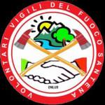 VFVSantena_logo