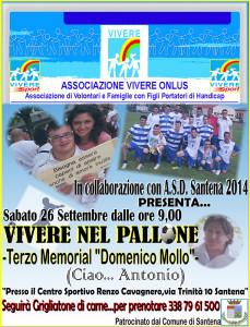 ViverenelPallone2015
